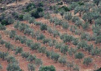 Peloponnes Bildschirmhintergrund