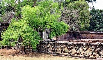 Angkor Wat Hintergrund Bild